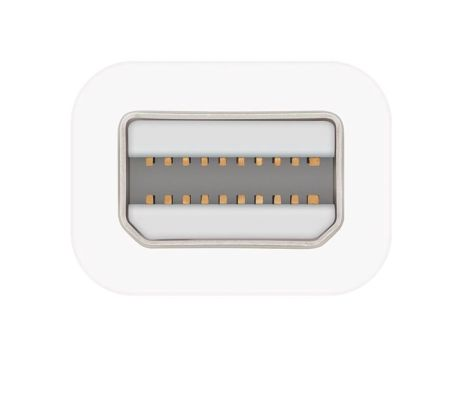 Apple Thunderbolt auf FireWire Adapter_0